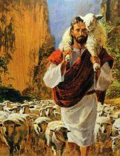 good shepherd