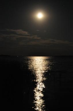 moonlight-1465210_960_720